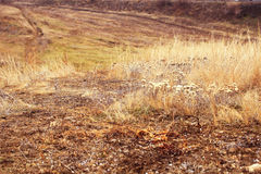 Ansicht vom Hügel lizenzfreie stockfotos