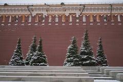 Ansicht vom Kreml und von Lenin-Mausoleum im Winter stockbilder