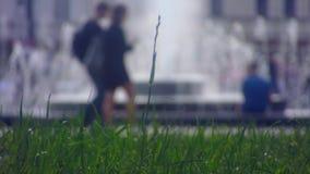 Ansicht vom Rasenrecht auf Brunnen stock footage