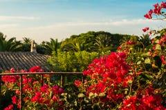 Ansicht vom romantischen Balkon Stockbilder