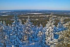 Ansicht vom Waldbrandkontrollturm. (3) Lizenzfreie Stockfotos