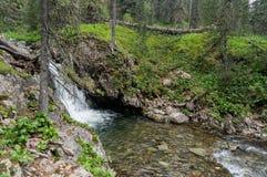 Ansicht von Altai Lizenzfreie Stockbilder