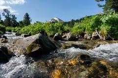 Ansicht von Altai Stockfoto