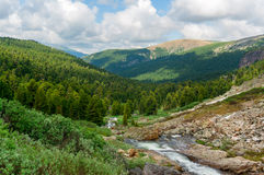 Ansicht von Altai Lizenzfreie Stockfotos