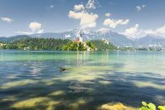 Ansicht von ausgeblutetem See, Slowenien, Europa Lizenzfreie Stockfotos