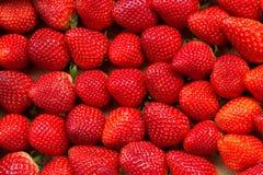 Ansicht von ausgewählten Erdbeeren Stockbild