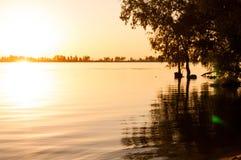 Ansicht von Bäumen über ruhigem Fluss bei Sonnenaufgang lizenzfreies stockbild