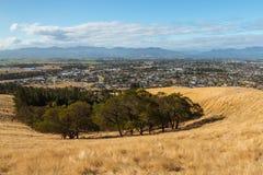 Ansicht von Blenheim-Stadt in Neuseeland von Wither-Hügeln Lizenzfreie Stockfotos