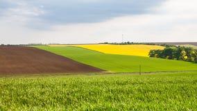 Ansicht von bunten Feldern Lizenzfreie Stockfotografie