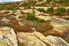 Ansicht von Caddilac-Berg im Acadia-Nationalpark Lizenzfreies Stockfoto