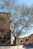 2017: Ansicht von Castelvecchio-Schloss von der Basilika Stockbilder