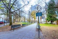 Ansicht von Chapman Square in im Stadtzentrum gelegenem Portland Lizenzfreies Stockfoto