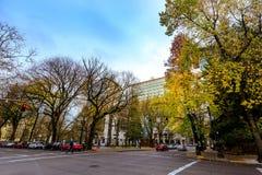 Ansicht von Chapman Square in im Stadtzentrum gelegenem Portland Lizenzfreies Stockbild