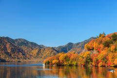 Ansicht von Chuzenji See in der Herbstsaison mit Reflexionswasser herein Stockbilder