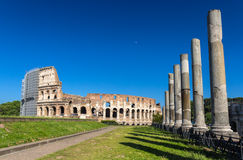 Ansicht von Colosseum vom Tempel von Venus und von Rom Stockfotografie