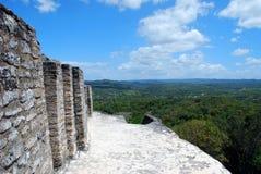 Ansicht von den Mayaruinen Stockfotografie