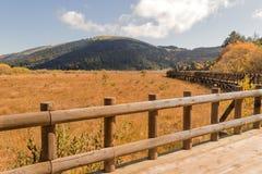Ansicht von der Brücke nahe See Abant Stockfoto
