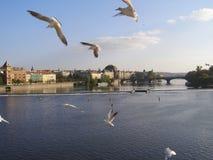 Ansicht von der Brücke von Karl stockfoto