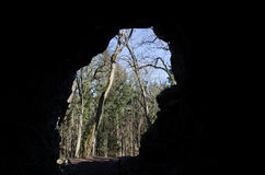 Ansicht von der Höhle Lizenzfreies Stockfoto