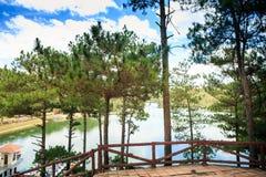 Ansicht von der hölzernen Terrasse durch Kiefern auf ruhigem See