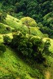 Ansicht von der kleinen des Adams Spitze, Sri Lanka Lizenzfreie Stockfotografie