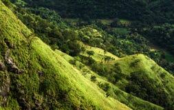 Ansicht von der kleinen des Adams Spitze, Sri Lanka Stockbild
