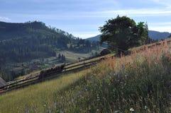 Ansicht von der Oberseite Lizenzfreies Stockfoto