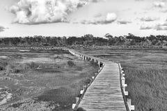 Ansicht von der Promenade zum Geelbek-Vogel-Fell einfarbig stockfotografie