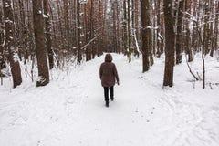 Ansicht von der Rückseite einer Frau in einer Jacke im Winterwald lizenzfreie stockfotografie