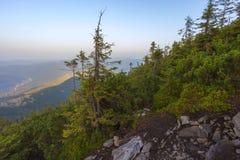 Ansicht von der Spitze des Berges auf der Bank Lizenzfreies Stockbild