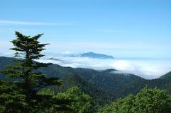 Ansicht von der Spitze des Bergs auf dem grünen Wald in Kuril-Insel Stockfotografie