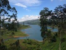 Ansicht von einem See Stockfotografie