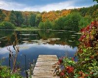 Ansicht von einem Teich Lizenzfreie Stockfotos