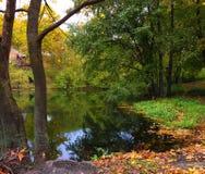 Ansicht von einem Teich Stockbild
