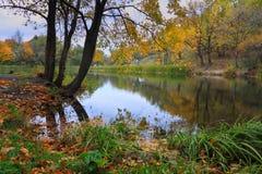 Ansicht von einem Teich Stockfotografie