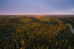 Ansicht von einer Höhe des Waldes in der Sonnenuntergangzeit Stockbilder