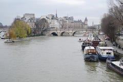 Ansicht von Fluss die Seine in Paris Lizenzfreie Stockbilder