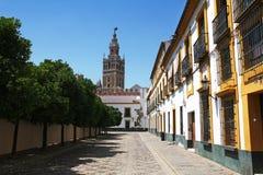 Ansicht von Giralda von der Piazza Patio de Banderas, Sevilla, Spanien Stockbilder