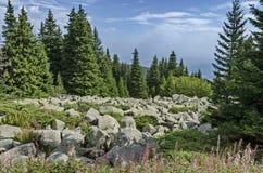 Ansicht von großen Granitsteinen des Steinflusses auf felsigem Fluss von weitem im Nationalparkberg Vitoshas Lizenzfreies Stockbild