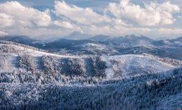 Ansicht von Hala Na Malej Raczy in ¹ Winter Beskid Å ywiecki Bergen in Polen stockfotografie