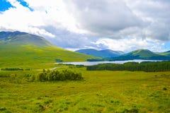 Ansicht von Hochländern, in Schottland, ein schönes grünes Feld mit einem L Lizenzfreie Stockbilder