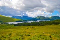 Ansicht von Hochländern, in Schottland, ein schönes grünes Feld mit einem L Stockbilder