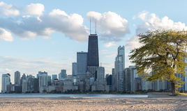 Ansicht von im Stadtzentrum gelegenem Chicago Lizenzfreie Stockfotos