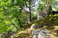 Ansicht von Inveruglas-Insel und von seinem Schloss stockfotografie