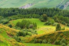Ansicht von kaukasischen Bergen in Gudauri, Georgia stockfotografie