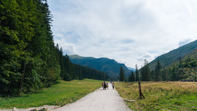 Ansicht von Koscielisko-Tal in polnischem Tatras Lizenzfreie Stockbilder