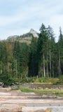Ansicht von Koscielisko-Tal in polnischem Tatras Lizenzfreie Stockfotografie