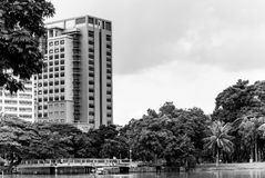 Ansicht von Lumphini-Park über Teich, Bangkok Stockfoto