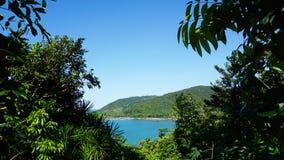 Ansicht von Meer gestaltet durch Grüns u. Bäume stockbilder