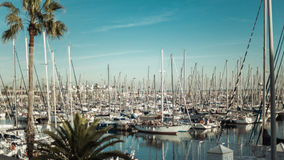 Ansicht von mehrfachen Yachten und von Palmen, Barcelona stockbild